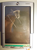 The Front of a mangled Palm T3